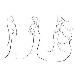 fashion in black lines vector image