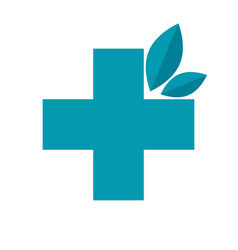 herbal medicine icon vector image vector image