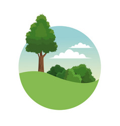 Tree forest landscape stamp vector