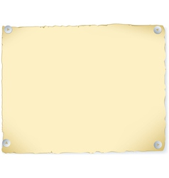 old paper attached buttons vector image