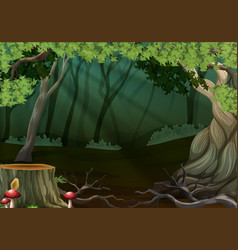 Dark forest with stump tree vector