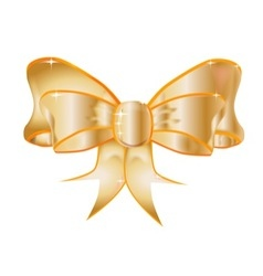 Golden Bow vector image