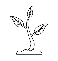 Sprout growing plant eco thin line vector