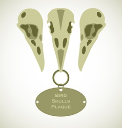 Three bird skulls vector