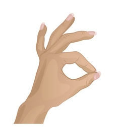 Hand doing a ok hand sign vector