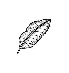 banana leaf hand drawn sketch icon vector image