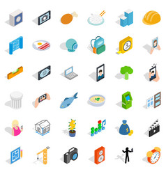 Specific icons set isometric style vector