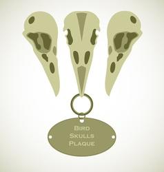 Three bird skulls vector