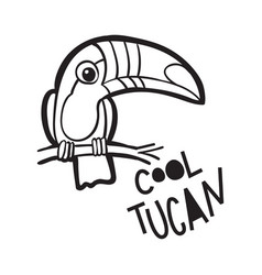 coloring book for adults bird toucan in carto vector image
