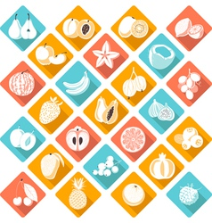 Flat fruits vector