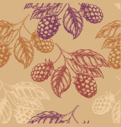 Raspberry blackberry seamless pettern vector