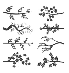 Tree branches with leaves silhouette vector image vector image