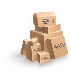 Moving cardboard box on white background vector