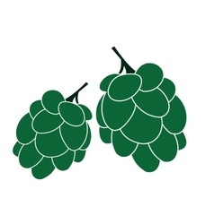 Hop flat icon vector
