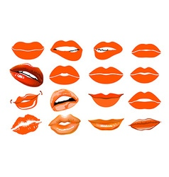 Orange lips collage lips set of isolated women vector