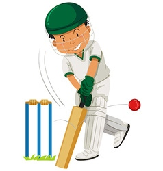Man player playing cricket vector