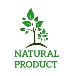 Natural eco organic product label badge vector