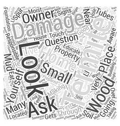 What does termite damage look like word cloud vector