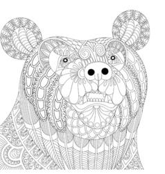Zentangle bear head for adult anti stress coloring vector