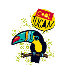 The phrase cool and colorful toucan toucan bird on vector