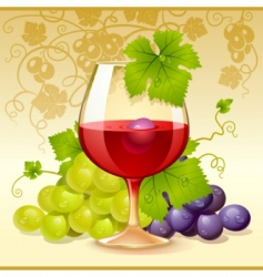 Wine glass and grape vector