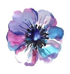 Watercolor of blue flower isolated vector
