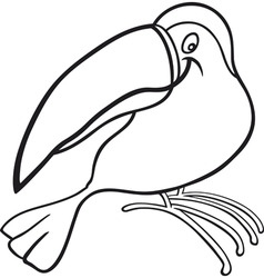 Cartoon illustration of funny toucan for coloring vector