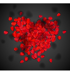 Heart of rose petals vector
