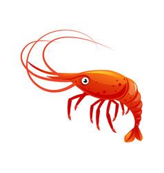 shrimp sea creature and seafood colorful cartoon vector image