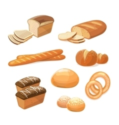Bakery and pastry products various sorts of bread vector