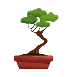 Bonsai pot tree nature decoration vector