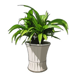 green plant in white pot vector image vector image