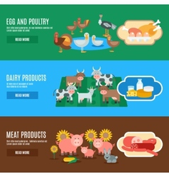 Domestic animals banner vector