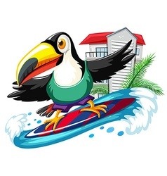 Toucan surfing in the sea vector image