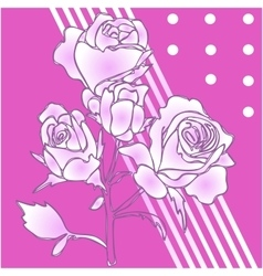 Hiqh quallity rose isolated vector