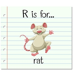 Flashcard letter R is for rat vector image vector image
