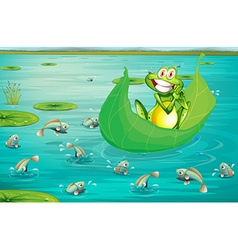 Frog and pond vector image