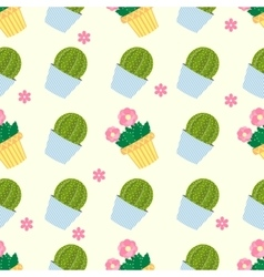 Cactus pattern background Seamless pattern vector image vector image
