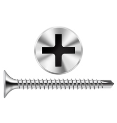 Screw and screw head chrome screw for metal vector
