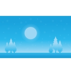 Silhouette of spruce and moon Christmas scenery vector image