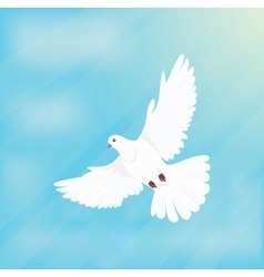 White dove soars in space design flat vector