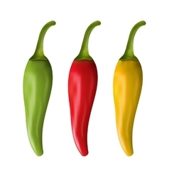 Set of colorful chili peppers isolated on white vector