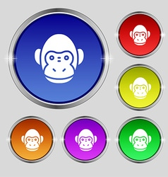 Monkey icon sign round symbol on bright colourful vector