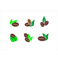 Coffee beans icons vector