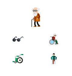 Flat icon handicapped set of wheelchair ancestor vector