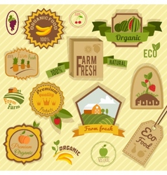 Eco labels fruits vector image vector image