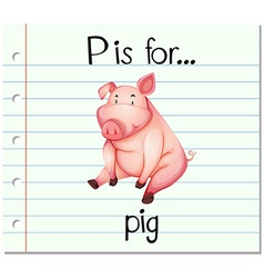 Flashcard letter p is for pig vector