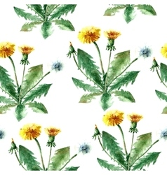 Watercolor dandelion herbs seamless pattern vector image vector image