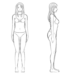 Woman body front and side view in outline vector