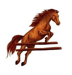 Horse jumping symbol for equine sport horserace vector